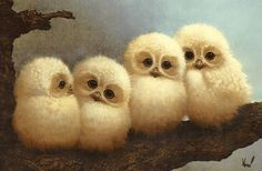 Find GIFs with the latest and newest hashtags! Search, discover and share your favorite Baby Owls GIFs. The best GIFs are on GIPHY. Baby Barn Owl, Cute Baby Owl, Baby Owls, Cute Babies, Owl Babies, Baby Hippo, Felt Animals, Baby Animals, Cute Animals