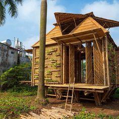 Casa em bambu. Hanoi, Vietnã. Projeto do escritório de arquitetura H&P Architects. #architecture #arquitetura #arte #artes #arts #art #artlover #design #architecturelover #instagood #instacool #instadaily #design #projetocompartilhar #davidguerra #arquiteturadavidguerra #shareproject #bambu #leveza #bamboo #lightness #bambooarchitecture #bamboodesign #bamboohouse #vietnam
