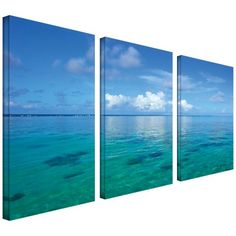 Art Wall 3-Piece Lagoon and Reef by George Zucconi Galler...