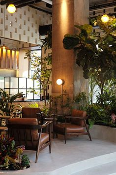 Custom-designed furniture at Devocion coffee shop in Brooklyn, New York shop, An indoor garden blooms inside a new architect-designed Brooklyn coffee shop