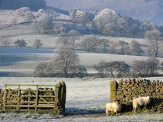 Hodder Valley Forest of Bowland, by Graham Cooper