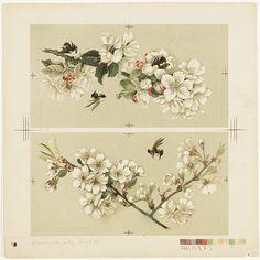 botanical print | possible shoulder to shoulder piece