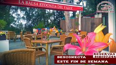 Desconecta de la rutina de la semana y ven a disfrutar del pulmón de Murcia este fin de semana con tu pareja , familia o amigos , estamos en la Alberca¡ te esperamos ! reservas 968607244