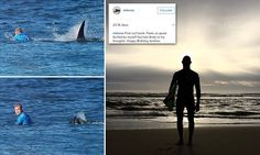 Mick Fanning makes emotional return to the water after shark attack