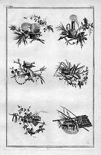 1770 - Ornament Garten Gärtnerei Blumen Floristik Kupferstich flowers