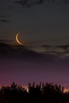 NEW MOON IN SAGITTARIUS – Time to step out of your comfort zone November 22, 2014 by Anne Reith, Ph.D. http://www.soullifetimes.com/newfull-moon-reportsanne-reith