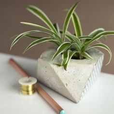 With some inexpensive cement and a geometric mold, create a planter or votive holder that is industrial chic and a quick and easy project!