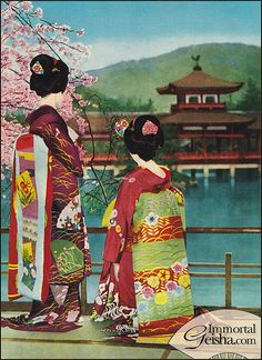 Maiko - Postcards from the 1950's
