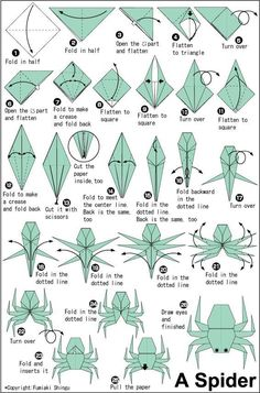 origami how to make spider instructions - Google Search