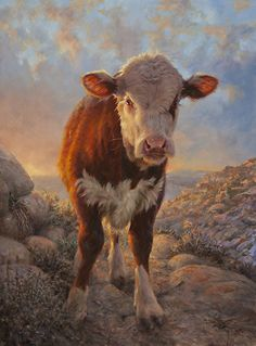 Morning Calf by William Suys (b.1955)
