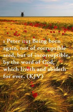 """If  """"INCORRUPTIBLE"""" means it cannot be corrupted, then why worry about corruption. We are spiritual beings only our earth suits will see corruption! Yea!"""