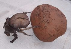 Burnt dung ball cedrella, Mopanie root beetle by Tony Fredriksson www.openskywoodart.com