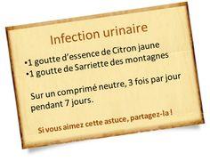 sarriette des montagnes infection urinaire
