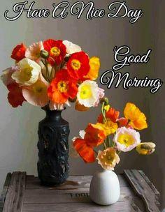 Good Morning Images For Whatsapp Good Morning Roses, Good Morning Photos, Morning Gif, Morning Quotes, Ikebana, Good Night Image, Orange Flowers, Flower Wallpaper, Flower Vases