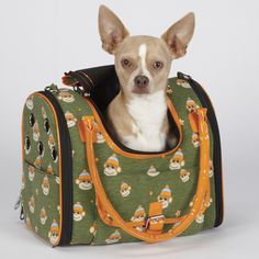 @Overstock - Go bananas over this adorable Monkey Business Pet Carrier. This durable pet carrier features an all-over monkey print.  http://www.overstock.com/Pet-Supplies/East-Side-Collection-Monkey-Business-Green-Small-Pet-Carrier/7501791/product.html?CID=214117 $59.99
