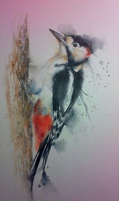 Greater Spotted Woodpecker Watercolour By Sylvia Farrow -Arthouse Watercolor Animals, Abstract Watercolor, Watercolor Illustration, Watercolor Flowers, Watercolor Paintings, Watercolors, Spotted Woodpecker, Bird Artwork, Feather Art