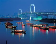 Rainbow Bridge, Tokyo, Japan. One of the most picturesque places I've ever been to.