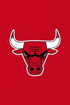 The Chicago Bulls!