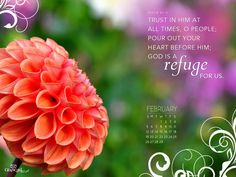 """""""Trust in Him at all times, o people, pour out your heart before Him; God is a refuge for us."""" ~ Psalm 62:8"""