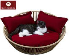 Designer Katzenkorb SIRO Saleen  Dieser Designer Katzenkorb SIRO Saleen in der Farbe Sahara besticht bei allen Samtpfoten mit dem besonderen Wohlfühleffekt. Die komfortable High Quality Latexfüllung lädt zum Schlafen, Entspannen und Kuscheln ein. Geräuschlos und wie auf einer Wolke gebettet sorgt dieser Designer Katzenkorb bei Ihrem Stubentiger für ruhige, erholsame Stunden. Zu dem Designer Katzenkorb Siro Saleen liefern wir Ihnen 3 Kissen im Farbton Rot.