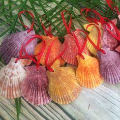 Colorful seashell ornaments for a beach theme Christmas tree! Hawaiian Christmas Tree, Summer Christmas, Tropical Christmas, Coastal Christmas, Holiday Tree, Christmas Party Themes, Christmas Door Decorations, Diy Christmas Ornaments, Christmas Parade Floats