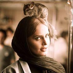 الناز و حیوانات - Elnaz and animals Iranian Actors, Iranian Women, Beautiful People, Beautiful Women, Beautiful Things, Iranian Beauty, Persian Girls, Celebs, Celebrities