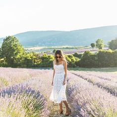 A serious case of wanderlust today! Missing these lavender fieldshellip