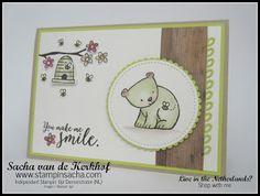stampin sacha, a little wild honey bear