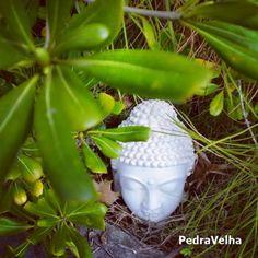 #DamosVidaaoseuJardim #cabeçabuddha #Buddha #Tranquilidade #Jardim #Zen #Garden #Garten #Paz #PeacefulLife #ViePaisible #Bouddha #Buda #aguadadecima #águeda #aveiro #portugal #pedravelha