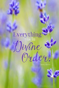 """""""Everything is in Divine Order"""" Print. A comforting reminder for your desk or a gift for a friend. On Etsy. www.everydayspirit.etsy.com xo"""
