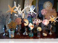 deniz kabuklarından yapılan eşyalar
