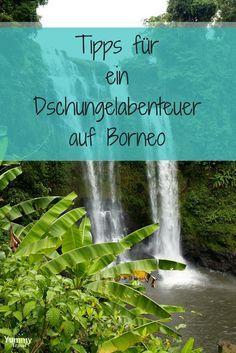 Borneo ist ein Traumziel! Der Malayische Teil der Insel ist dicht bewachsen von Dschungel. Wenn du einen Trip abseits vom Trubel suchst, dann bist du hier bestens aufgehoben.  Hier bekommst du Tipps!