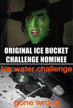 Ice Bucket Challenge Funnies - 18 Pics