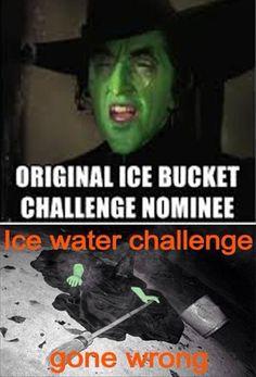 Ice Bucket Challenge Funnies - 18 Pics