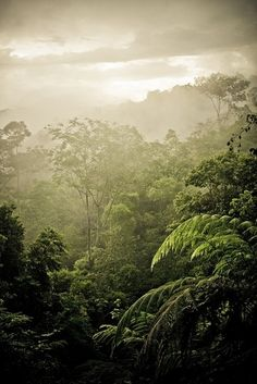 Costa Rica - 50 Ultimate #Travel #Bucket List Ideas ... → Travel #Ultimate