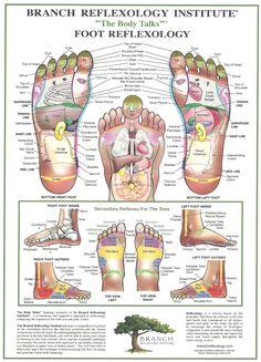 Foot+Reflexology.jpg (1152×1600)