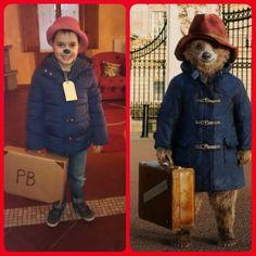 Costume di Carnevale - Paddington Bear