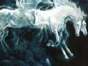 Legendy województwa śląskiego Horses, Animals, Historia, Animales, Animaux, Animal, Animais, Horse