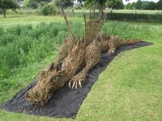Willow dragon! MUST Make One!!!