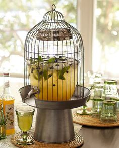 Bird Cage Drink Dispenser Idea Use Large Gl Pieces In Open Bottom Wired Cages