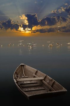 ✯ Morning Has Broken - Really Cool Pic!