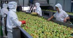 10 aliments fabriqués en Chine qui sont pleins de plastique, de pesticides et de produits chimiques cancérigènes