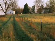 size: Photographic Print: Historic Stevens Creek Farm Near Lincoln, Nebraska by Joel Sartore : Subjects Beautiful Farm, Beautiful Places, Country Life, Country Roads, Country Living, The Last Summer, Farm Life, Images, Scenery
