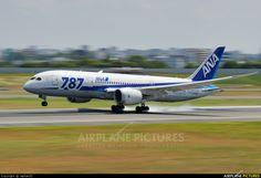 ANA - All Nippon Airways JA818A aircraft at Osaka - Itami Int photo