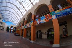 Anexo del Ayuntamiento de Coatzacoalcos Peleng 8mm