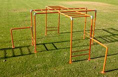 """Did you know that monkeys can't brachiate (arm swing from tree to tree)? So """"monkey bars"""" should really be termed """"ape bars!"""""""