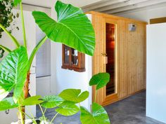 Luminous Cantabrian house brings nature inside with plants