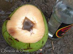 Pinga no Coco para Baianos