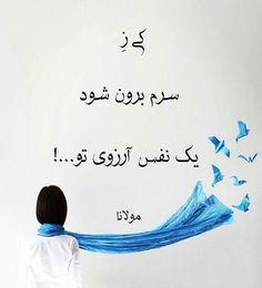 #مولانا_ی_جان♥ آرزوی تو