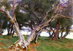 The Athenaeum - Olive Trees, Corfu (John Singer Sargent - ) 1909